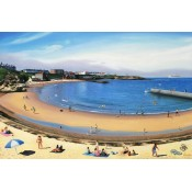 Pictures of Cullercoats (5)
